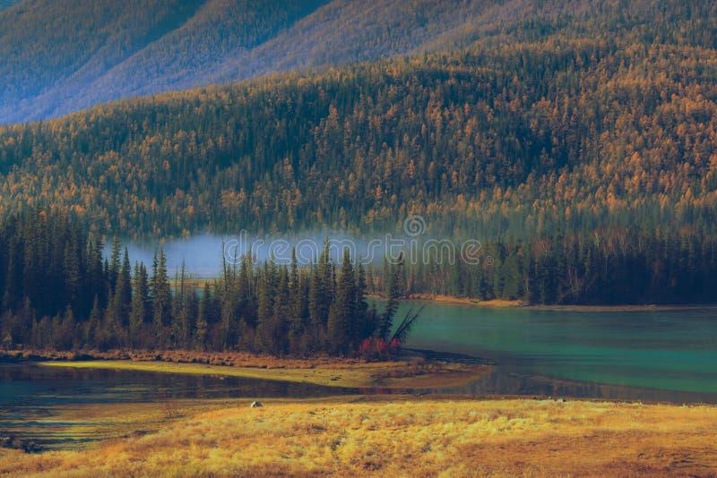 Залив Shenxian озера Kanas стоковые изображения