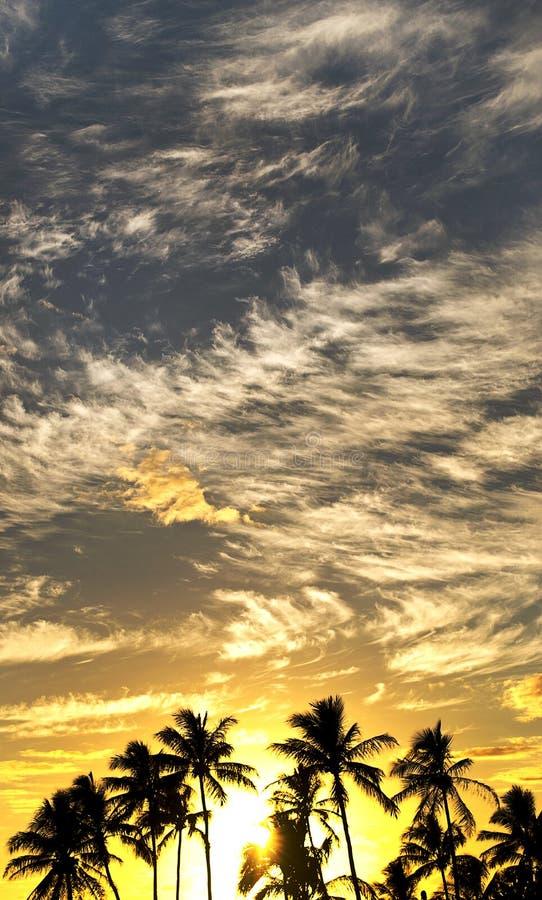 Залив Waimea захода солнца стоковые фотографии rf