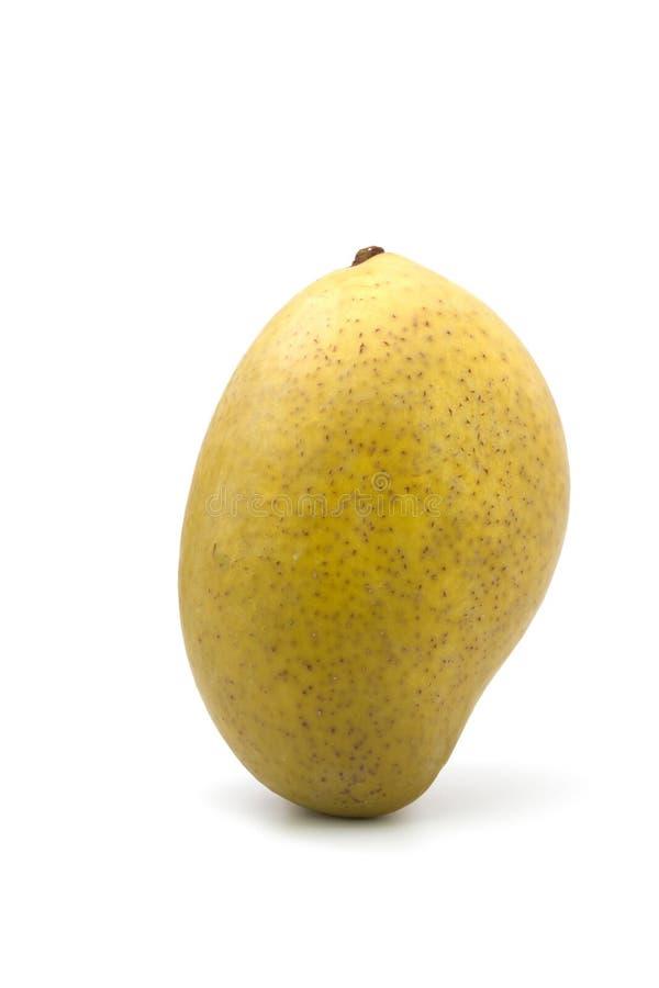 Замаринованное манго на белой предпосылке стоковая фотография rf