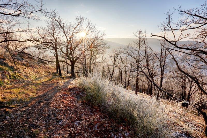Замерзните осенний рассвет, утесы покрытые с свежим снегом порошка стоковые изображения