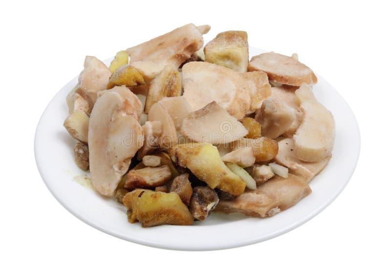 Замерли грибы подосиновика для изолированного julienne цыпленка и сливк стоковое изображение