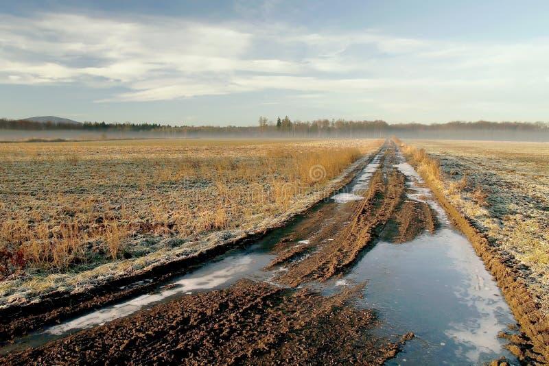 замерли осенью, котор сельский след восхода солнца стоковое фото rf