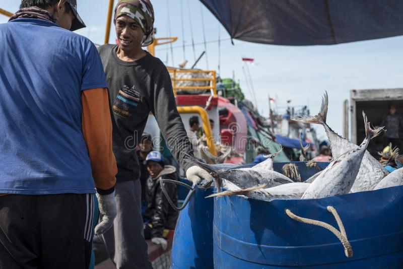 Замерли тунец транспортируется со шлюпки на северной гавани Джакарты в Индонезии стоковые изображения