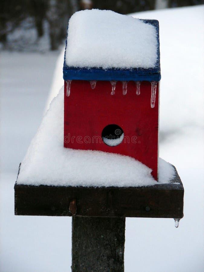 замерли birdhouse, котор стоковое изображение