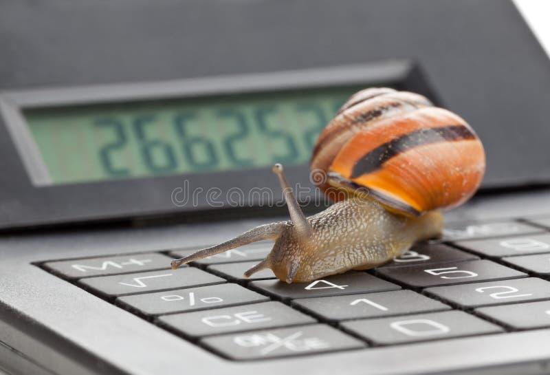 Замедляйте финансы стоковая фотография