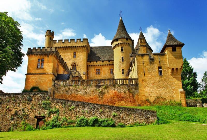 Замки Франции Puymartin стоковые фото