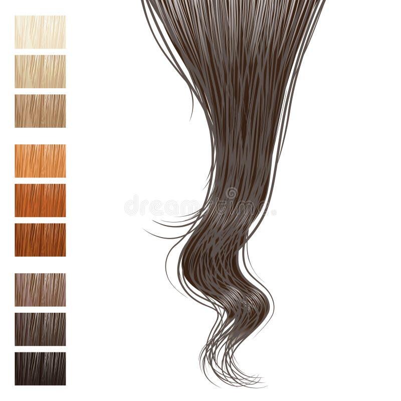 замок волос иллюстрация вектора