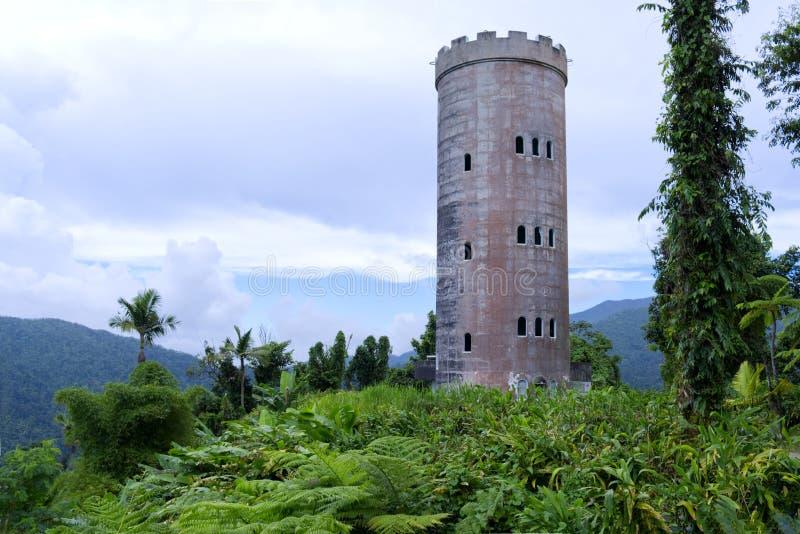 Замок в тропическом лесе стоковое фото rf