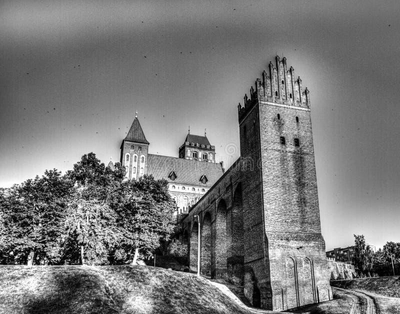 Замок в Kwidzyn стоковые фотографии rf