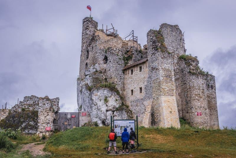 Замок в Mirow стоковые фотографии rf