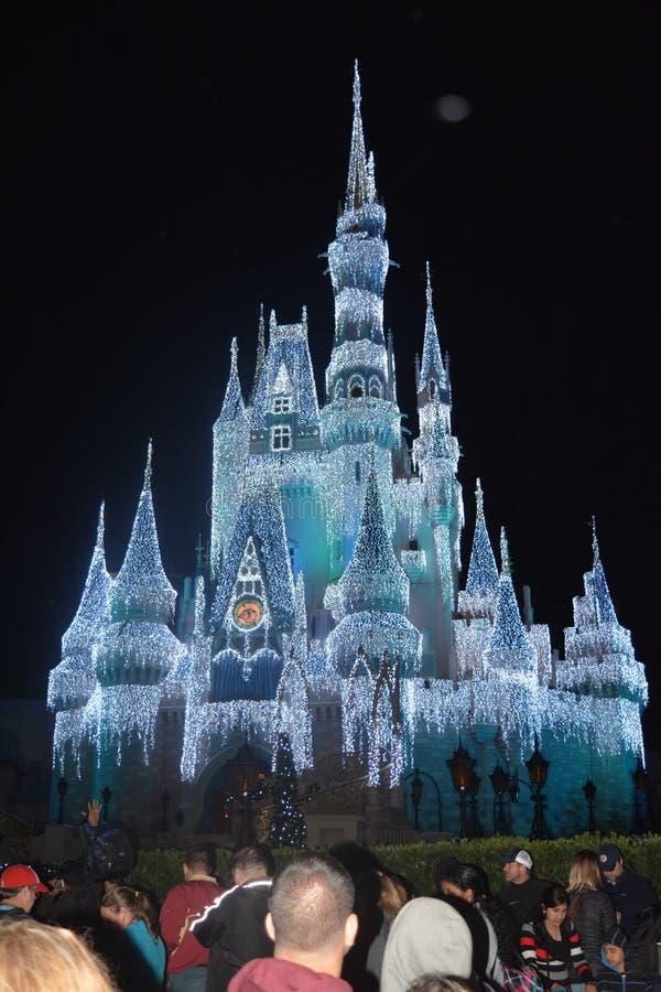 Замок Дисней в волшебном королевстве стоковое изображение rf