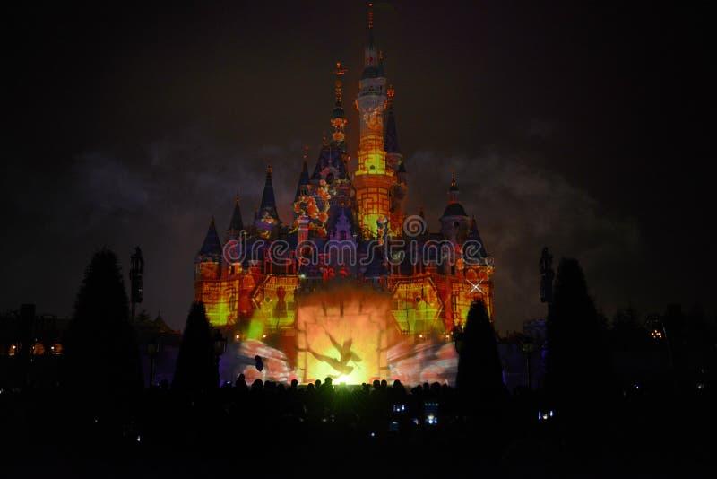 Замок Дисней с выставкой света и фейерверков стоковое изображение rf