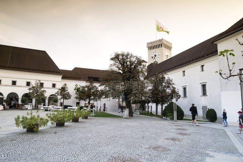 замок европа ljubljana Словения стоковая фотография rf