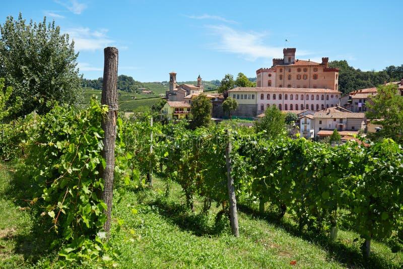 Замок и виноградники Barolo средневековые в Пьемонте, Италии стоковые изображения rf