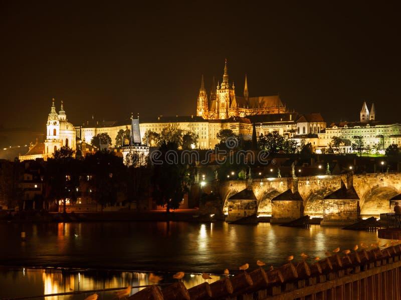 Замок и Карлов мост Праги на ноче стоковое фото rf