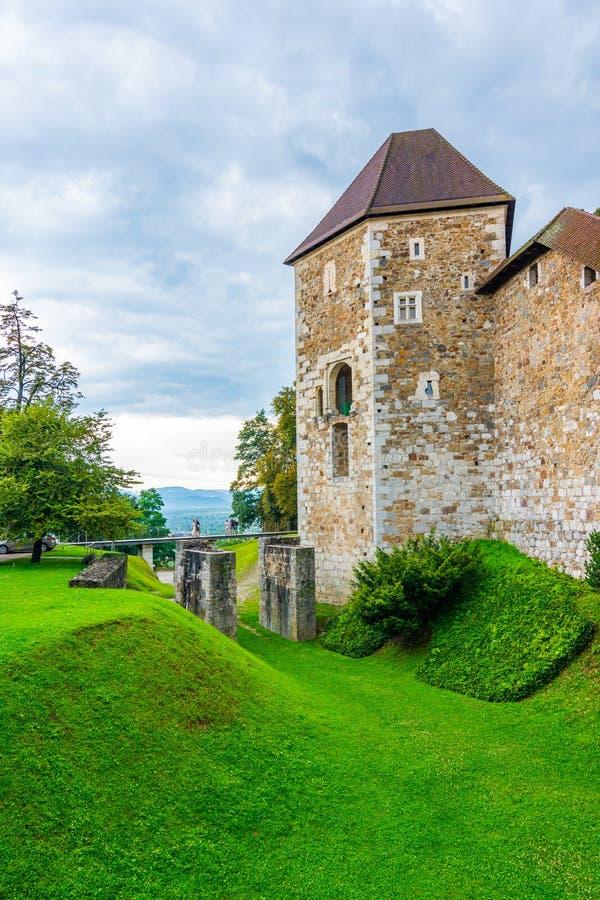 Замок Любляны Историческое средневековое здание с парком вокруг Старая крепость Словении в центре столицы Словении стоковые фото