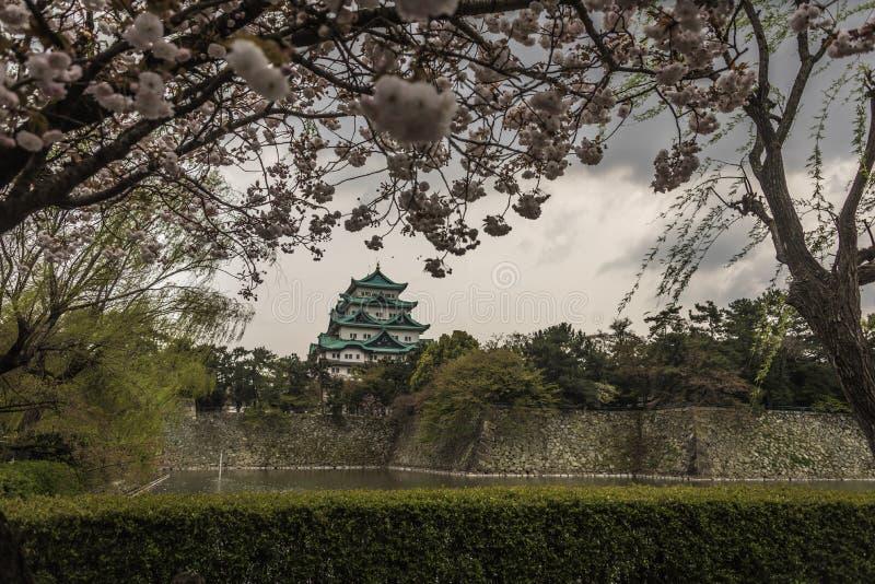 Замок Нагои стоковое изображение