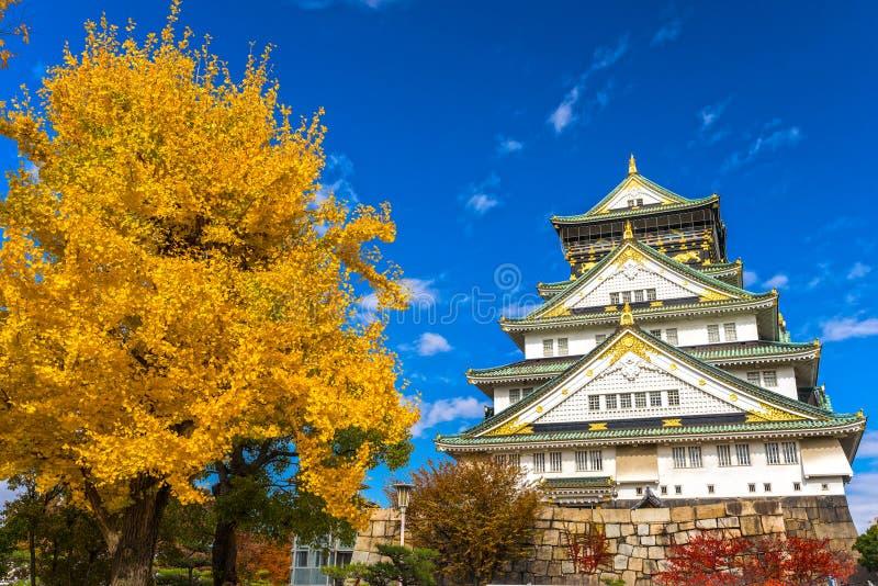 Замок Осака в Осака, Японии стоковое изображение