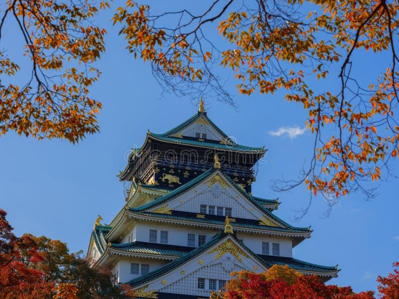 Замок Осака в Японии осенью стоковое изображение rf