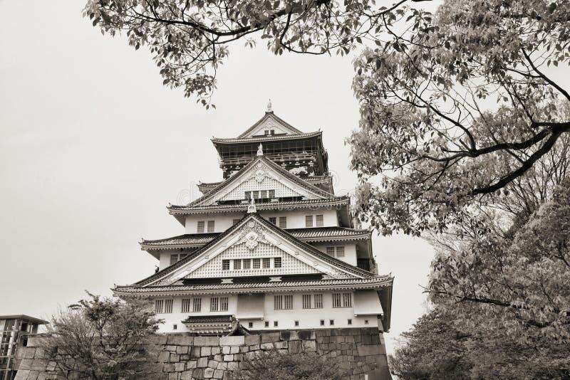 Замок Осака стоковое изображение rf