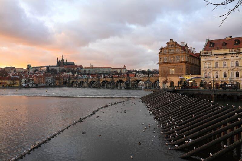 Замок Праги готический с Карловым мостом после захода солнца, чехии стоковое изображение rf