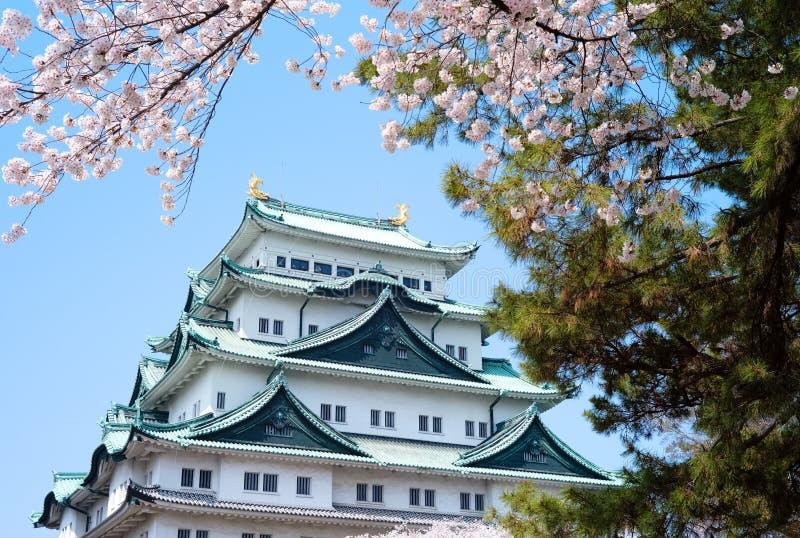 Замок Сакуры Нагои стоковое фото