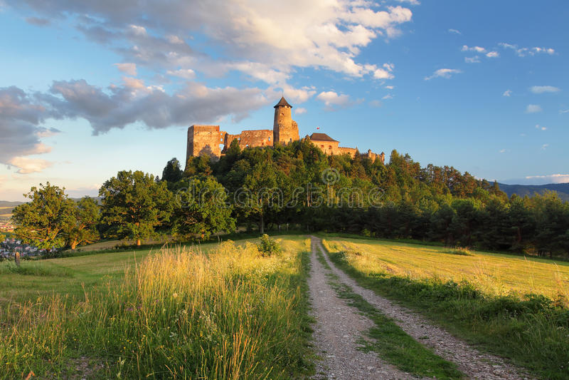 Замок Словакии, Stara Lubovna с дорогой стоковое изображение rf