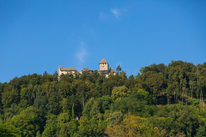 замок Швейцария стоковые фото