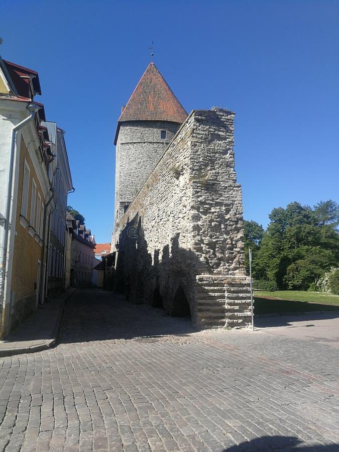 Замок Эстонии Talinas старый стоковое изображение rf