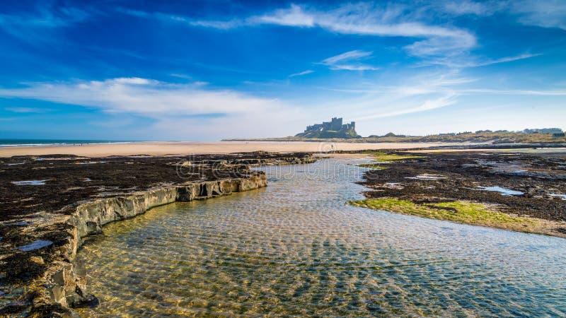 Замок Bamburgh на побережье Нортумберленда стоковое фото rf