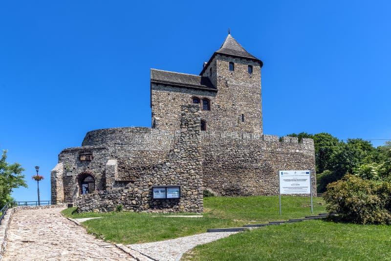 Замок Bedzin стоковая фотография