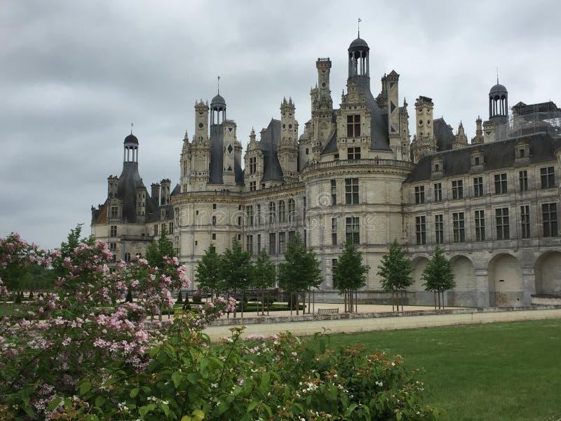 Замок Chambord с цветками стоковые фотографии rf