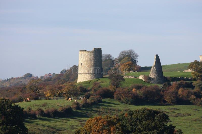 Замок Essex Англия Hadleigh стоковые фото