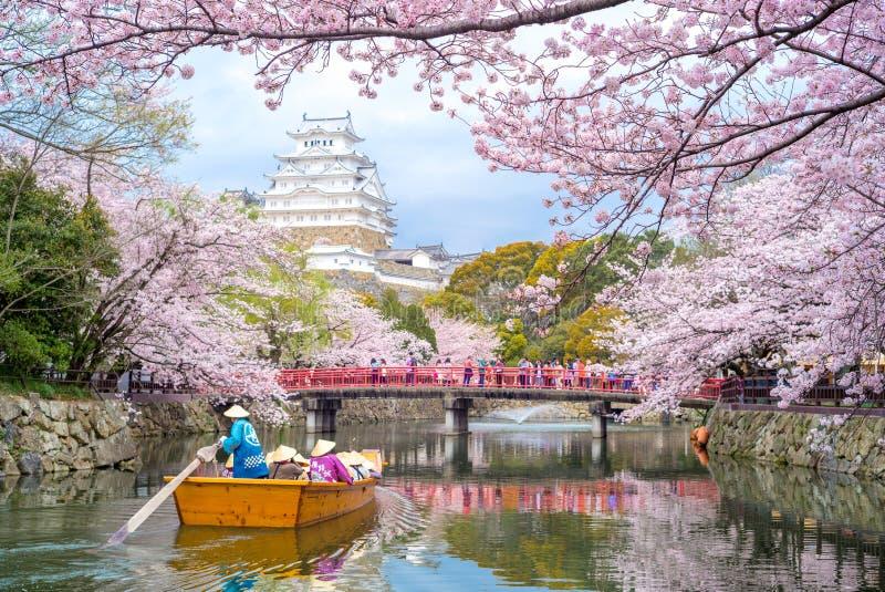 Замок Himeji с красивым сезоном вишневого цвета весной стоковое фото rf