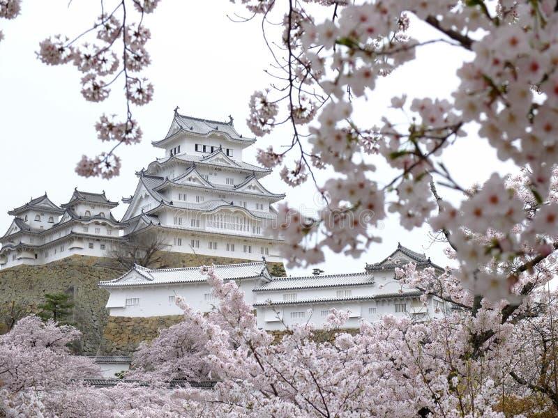 Замок Himeji стоковое изображение rf