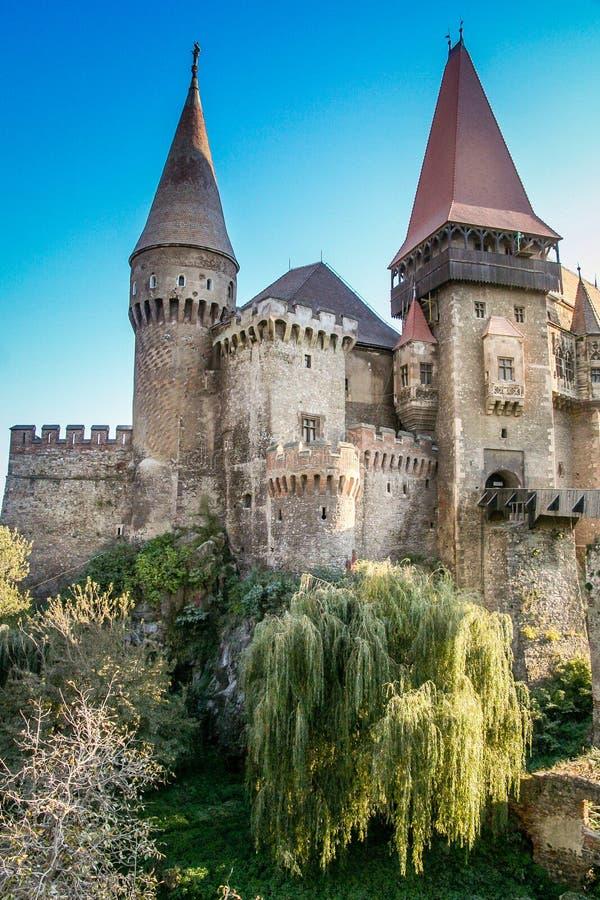 Замок Hunyad стоковые изображения