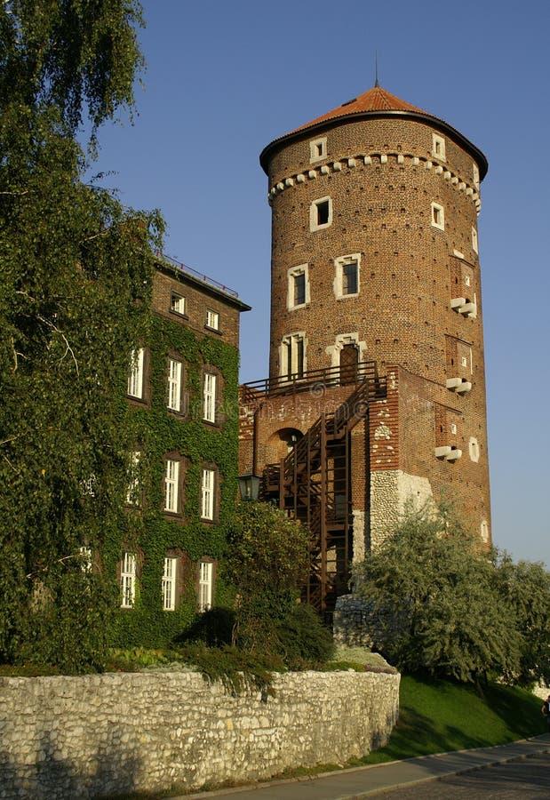 замок krakow стоковые фото