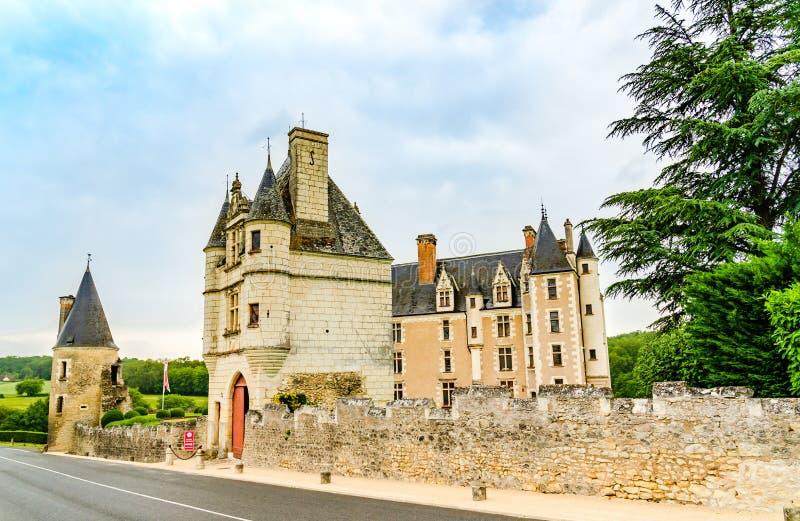 Замок Montpoupon в области Loire Valley, Франция стоковое изображение rf