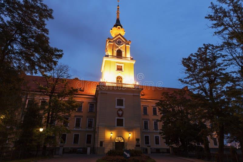 Замок Rzeszow - Rzeszow, Польша стоковое фото rf
