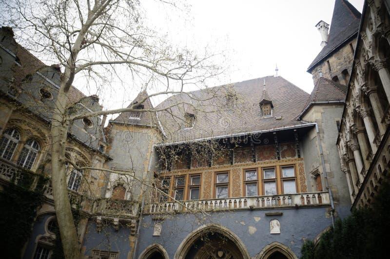 Замок Vajdahunyad в Будапешт, Венгрии стоковое фото rf