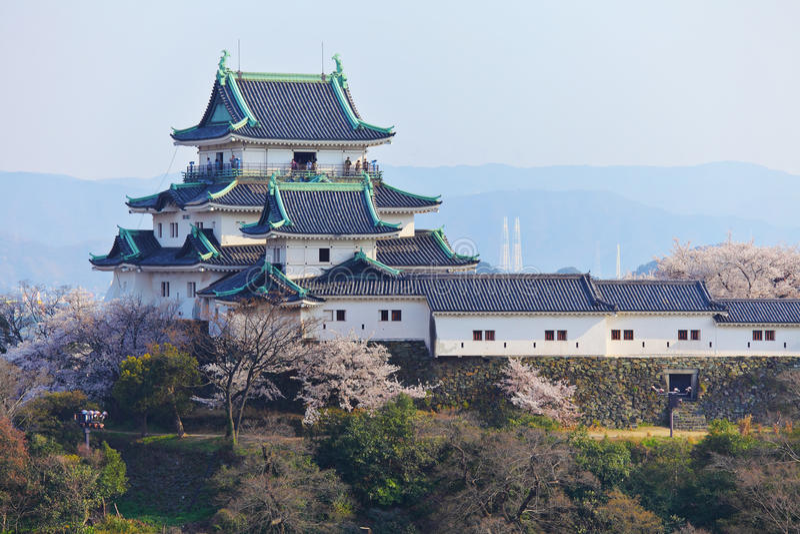 Замок Wakayama в Японии стоковое фото rf