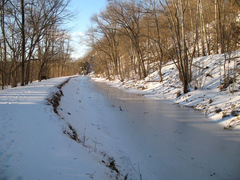 замораживание в феврале стоковые изображения rf