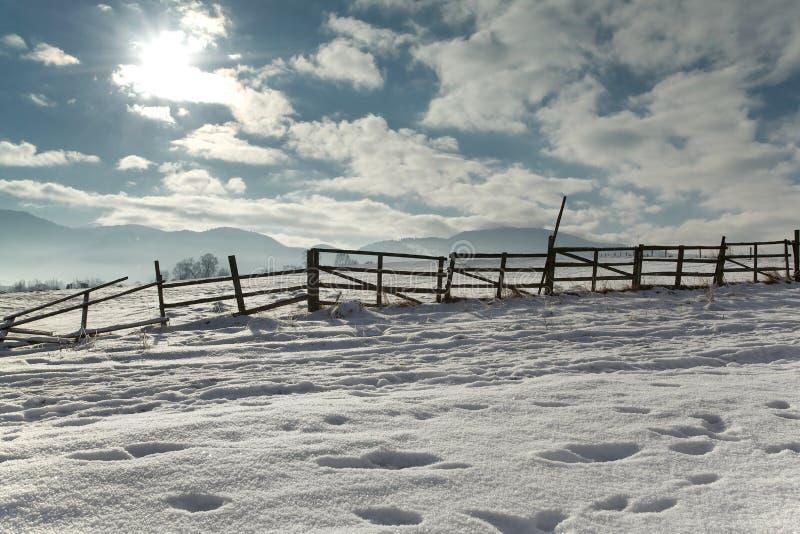 Замороженная загородка стоковая фотография rf