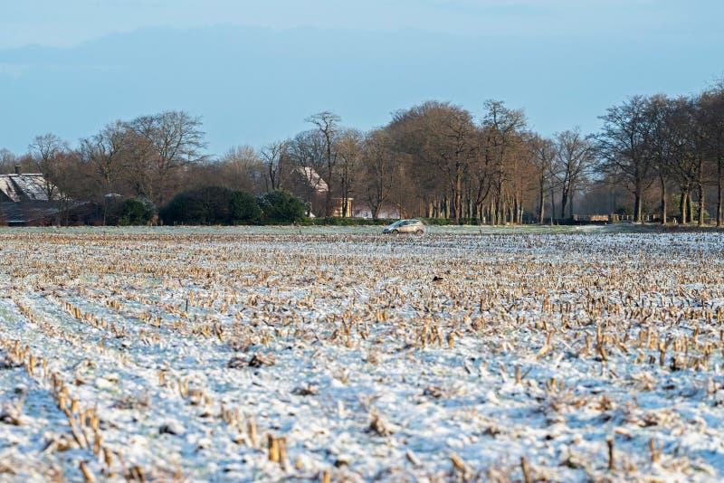 Замороженная обрабатываемая земля в сельском ландшафте голландца стоковые фото