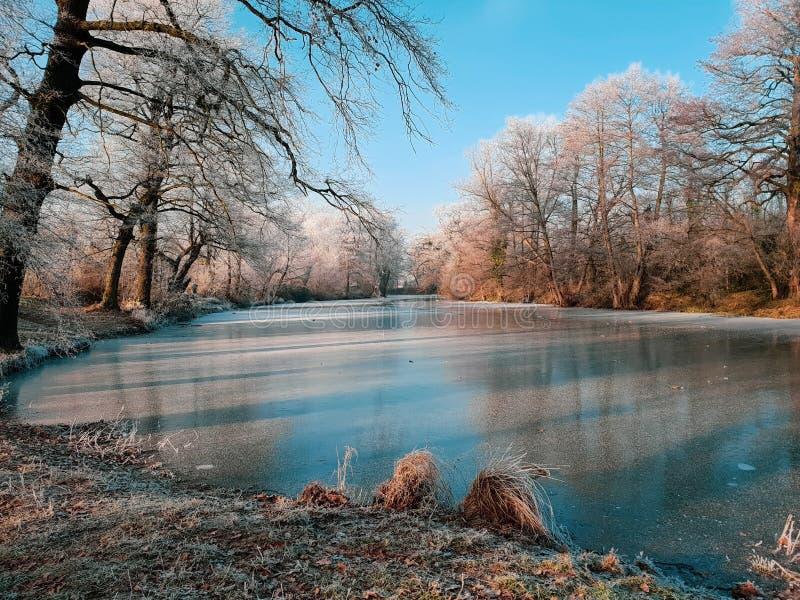Замороженное озеро в красивом ландшафте зимы стоковое изображение