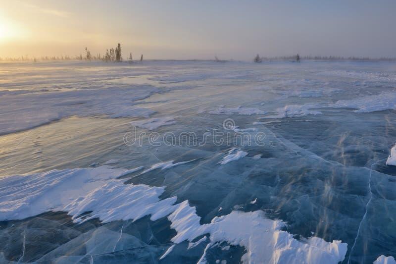 Замороженное озеро на тундре стоковая фотография rf