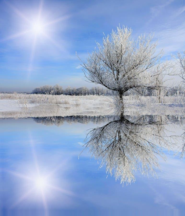 замороженное озеро около зимы вала стоковые изображения