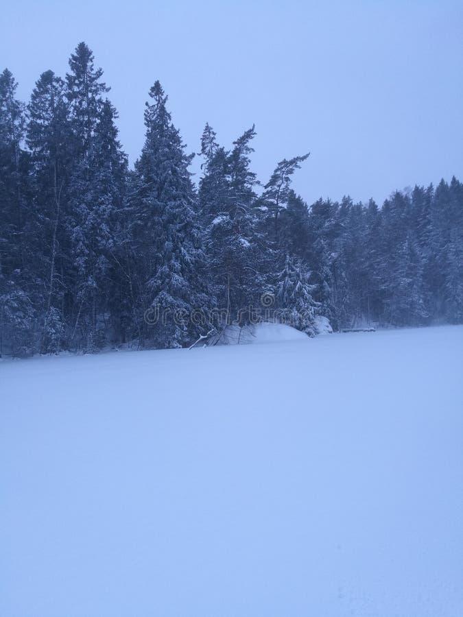 замороженное озеро стоковые изображения rf