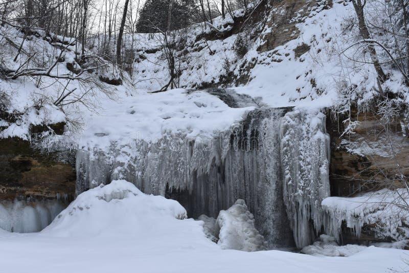 Замороженные падения стоковое изображение rf