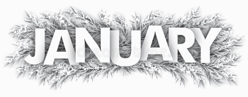 Замороженные хворостины январь ели бесплатная иллюстрация